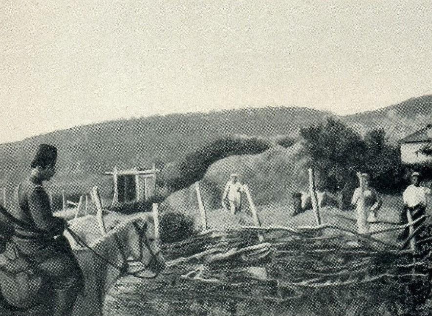Djepat shqiptar dhe ritet tjera dhe foto historike - Faqe 5 Glj044a