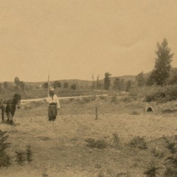 FMG009: Threshing at Micjana (near Burizana) northwest of Kruja, Albania (photo: Friedrich Markgraf, 1924-1928).